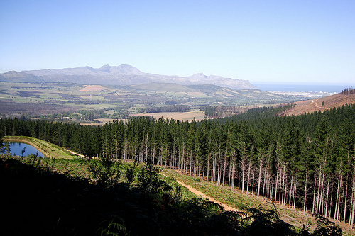 Helderberg Wine Route